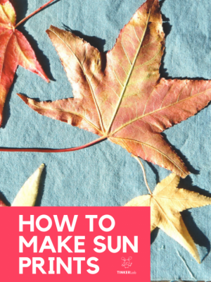 How to Make Sunprints