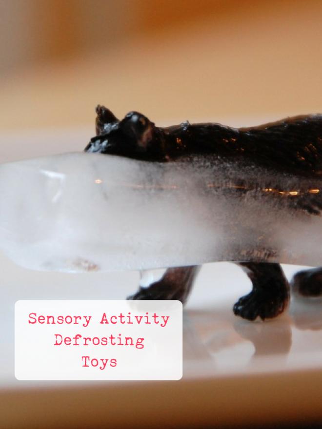 Defrosting Animals