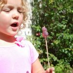 Science Projects for Kids | Rock Candy