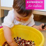 Baby Bean Bowl Exploration