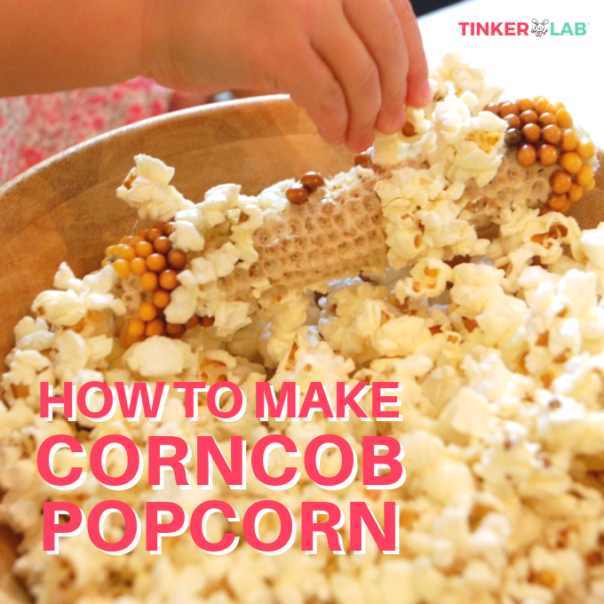 Popcorn Cob How To Pop From A Tinkerlab