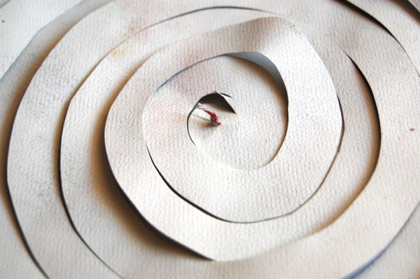 knotted string on back of spiral