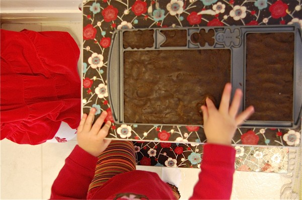 How to Make a Gingerbread House (using a mold). Shhhh...it's still homemade. :) | TinkerLab.com