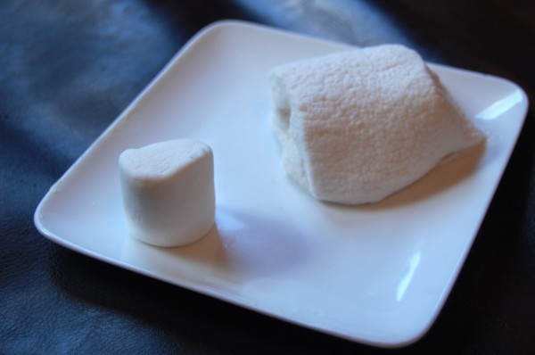 The fun and simple microwave marshmallow experiment | Tinkerlab
