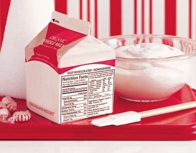 graham cracker houses milk carton