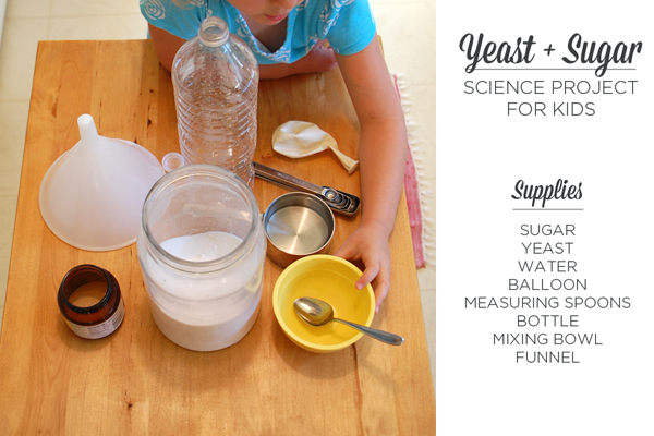 In this Yeast Sugar Experiment, we'll watch yeast feed on sugar to fill a balloon with air. A fun science project for kids that's with household, everyday materials.