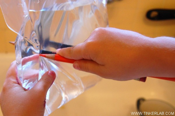 Magical Plastic Bag Experiment | TinkerLab