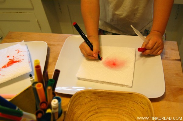 add water to marker on paper towel experiment
