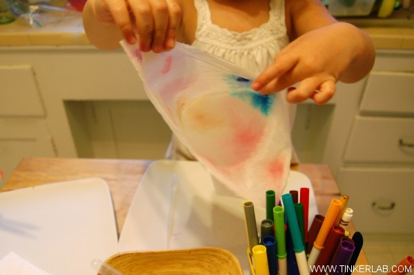 add water to marker on paper towel experiment Chromatography