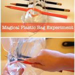 Magical Plastic Bag Experiment