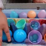 egg carton challenge