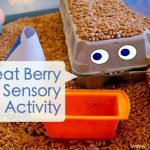 Sensory Activity: Wheat Berries