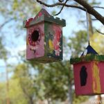 Painting Birdhouses
