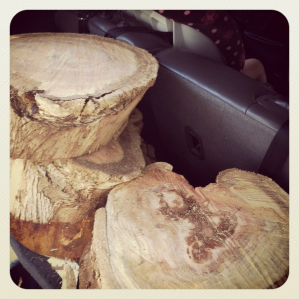 Tree stumps for nature play scape, from Tinkerlab.