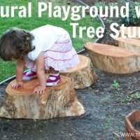 Build a Natural Playground with Tree Stumps,