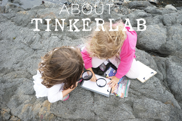 About TinkerLab