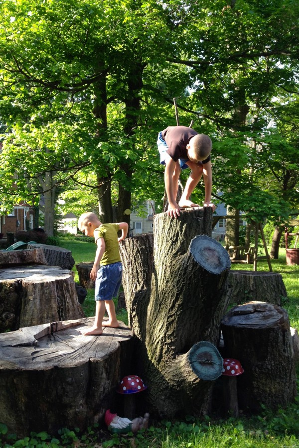 kids climb on tree stumps