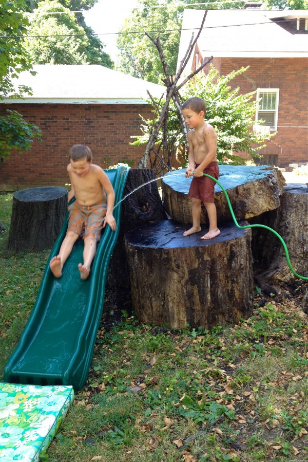 kids play tree trunk stumps