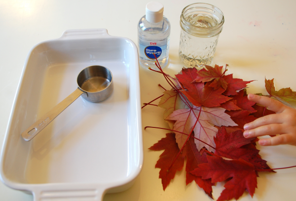 Fall Crafts Glycerin Leaves