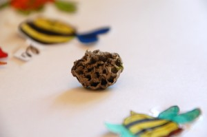 Inspired by Nature: wasp nest and bumble bee art