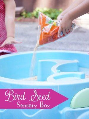Bird Seed Sensory Box