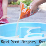 Birdseed Sensory Box Activity for Toddlers and Preschoolers