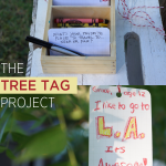 The Tree Tag Project {or How to Surprise Your Neighbors}