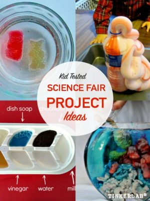 science fair project ideas that will win 1st place