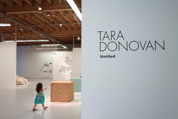 tara donovan text