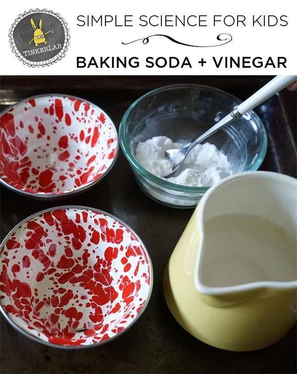 Baking Soda and Science Exploration | Fun Science Experiments  |  TinkerLab.com