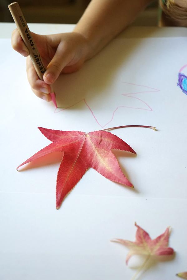 Fall Craft Ideas | Leaf Drawing  | TinkerLab