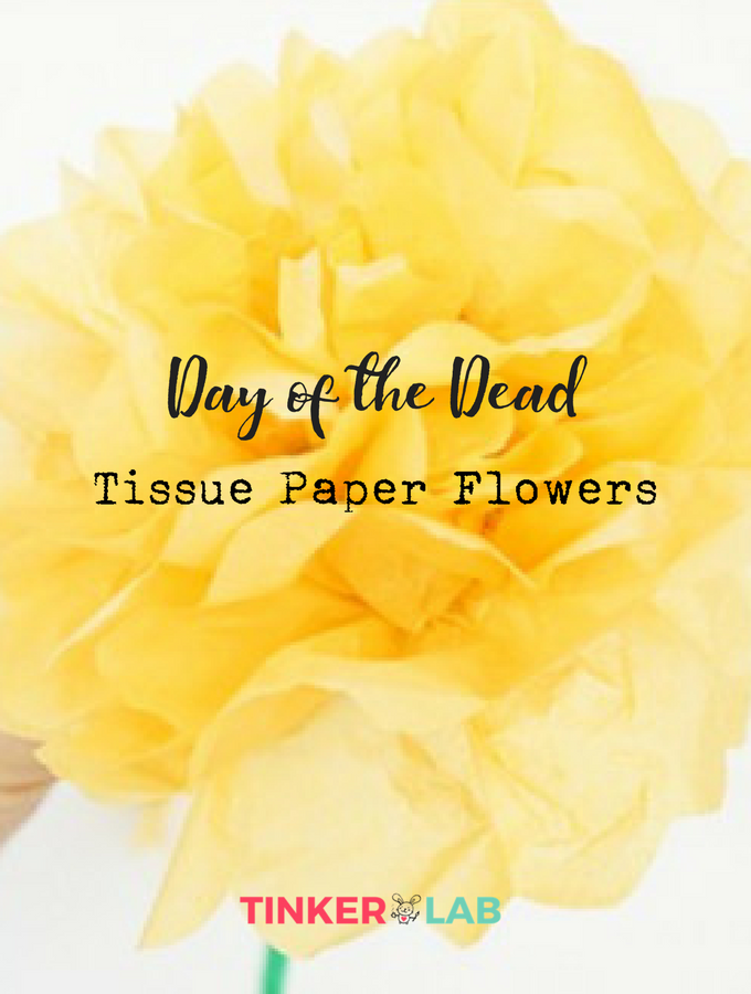 How to make marigolds for day of the dead tinkerlab tissue paper flowers day of the dead mightylinksfo
