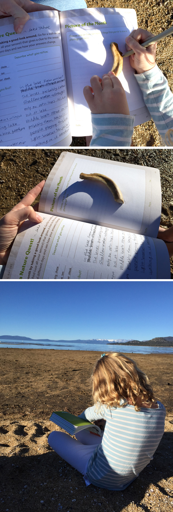 The Nature Connection Book Review