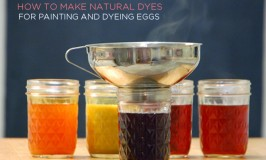How to make natural dyes from beets, red cabbage, turmeric, blueberries, and annatto seeds.