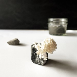 Grow White Aragonite Crystals