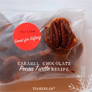 Chocolate Pecan Turtle Recipe