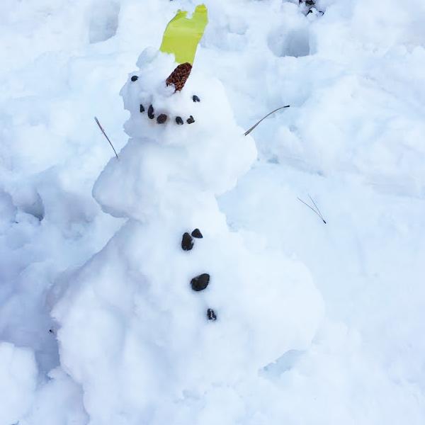 Kid made snowman