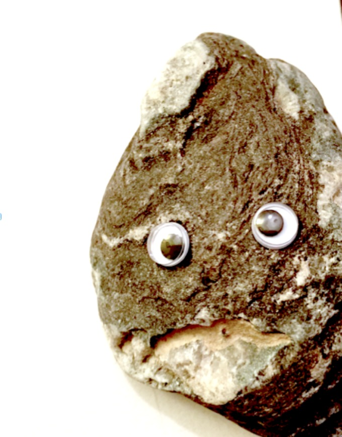 rock googly eyes