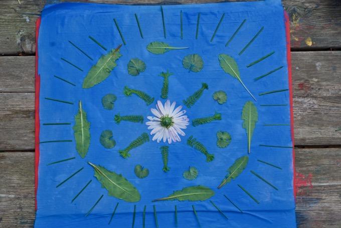 How To Make Sun Prints On Fabric Tinkerlab