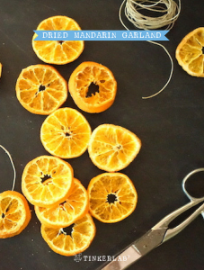 Dried Orange Garland
