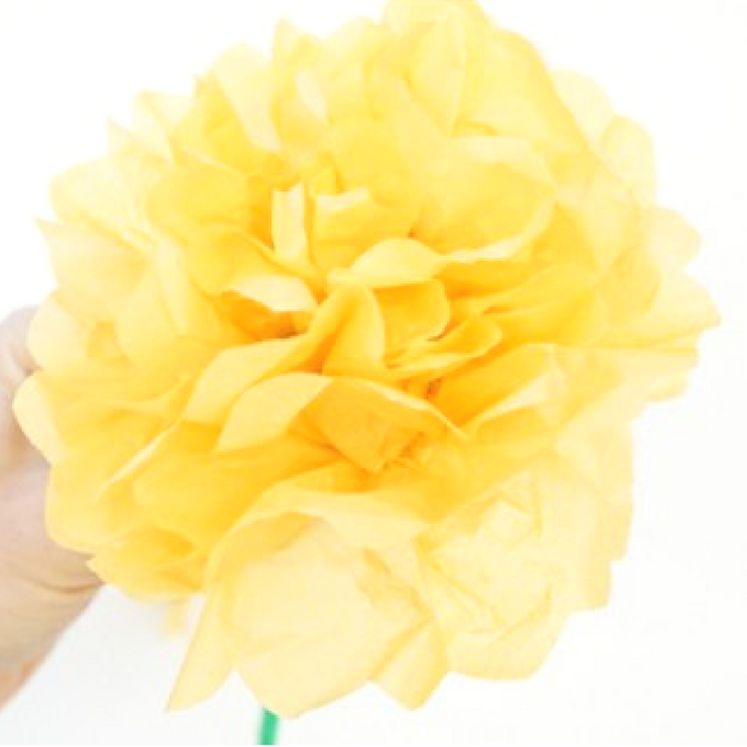 how to make tissue paper flowers fluff it