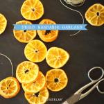 Dried Mandarin Garland for Festive Christmas Decorating